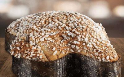 Colomba di Tosi dolce della tradizione pasquale salsese